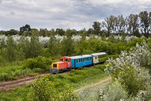 Balaton Fenyves (Narrow gauge train)